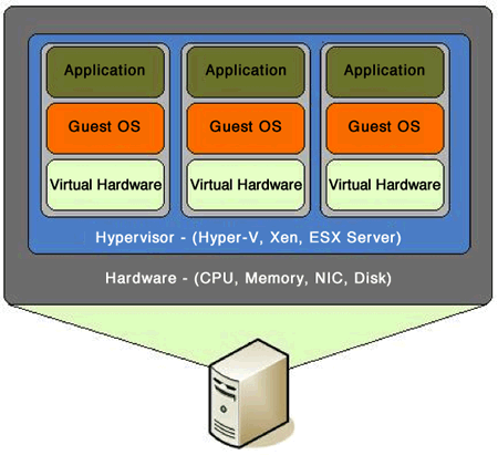 Schematic figure of the Virtual Machine architecture